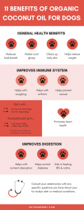 Infographic with 11 Benefits of Organic Coconut Oil for Dogs on DIY Dog Treats: Peanut Butter Coconut Oil Dog Mom Blog on Not So Mommy
