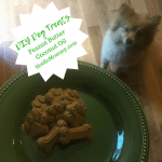 Photo of DIY Peanut Butter Coconut Oil Dog Treats on Dog Mom Blog on Not So Mommy