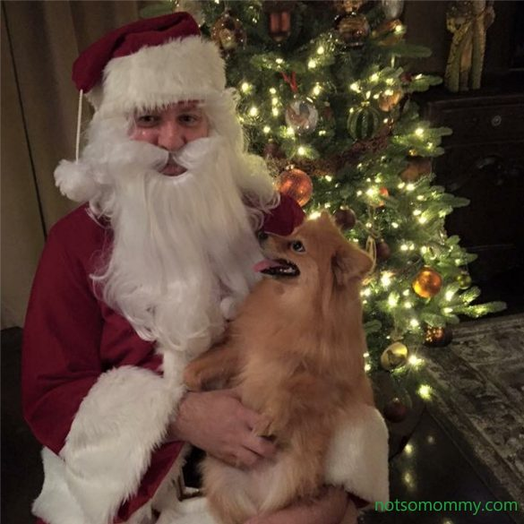 Photo of Maddie sitting on Santa's lap, looking up at him. Gallery Photo on Not So Mommy.