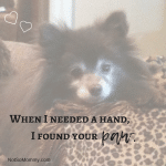 Photo of Valentine, a chocoloate brown Pomeranian wiht the quote When I needed a hand, I found your paw on Puppies, Dogs, and Fur Babies Good Things Blog on Not So Mommy