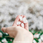 Photo of a hand with a single flower on Thank you for showing me grace... Infertility Blog on Not So Mommy...