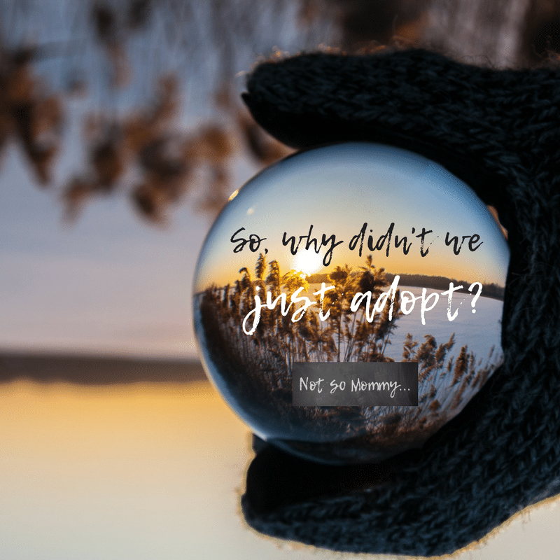 Photo of a gloved hand holding a glass ball with a sunset & dry flowers showing through on Why didn't we just adopt? Infertility/Childless Blog on Not So Mommy...
