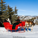 Photo of a one horse open sleigh on The Calmness of the Season on Childless Holidays Series on Not So Mommy...