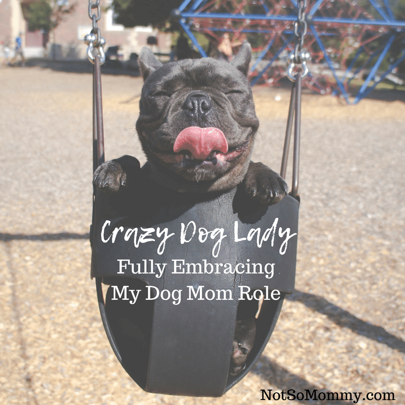 Photo of a smiling dog in a child's swing on Crazy Dog Lady: Fully Embracing My Dog Mom Role on Not So Mommy... Infertility/Childless Blog