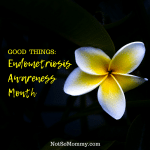 Photo of a white and yellow flower on Good Things: Endometriosis Awareness Month on Infertility/Childless Blog on Not So Mommy...