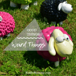 Photo of a plastic lamb with crazy eyes on Good Things: Weird Things on Not So Mommy... Blog