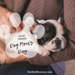 Photo of a woman holding a sleeping puppy on Dog Mom's Day on Good Things Blog on Not So Mommy...
