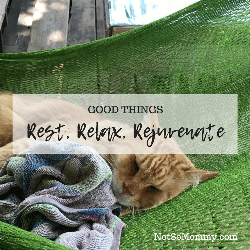Photo of a cat sleeping in a hammock on Rest, Relax, Rejuvenate on Good Things Blog on Not So Mommy...
