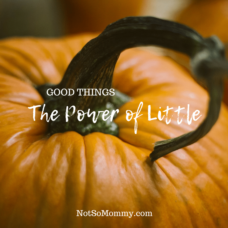 Photo of an orange pumpkin with a curled stem on The Power of Little Good Things Blog on Not So Mommy