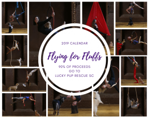 Photo Collage of Flying for Fluffs Calendar, By Kadie Austen Photography, featured on Not So Mommy..., a childless blog