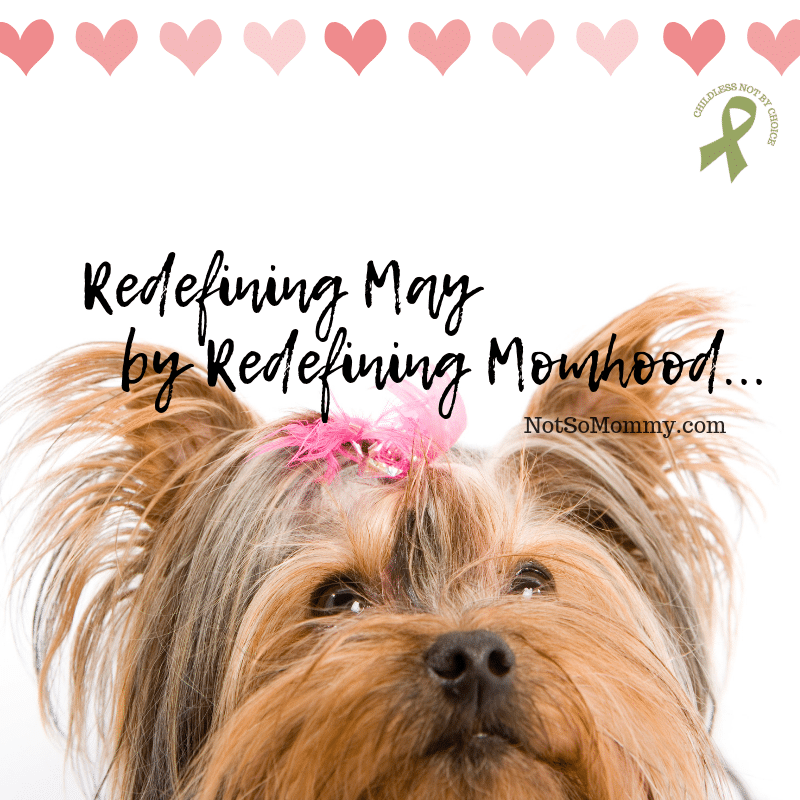 "Photo of an adorable puppy with a pink bow on ""Redefining May by Redefining Momhood"" on Not So Mommy..., a childless blog"