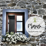 Photo of a double window surrounded by rock with a flowerbox below on Plans on Not So Mommy..., a childless blog