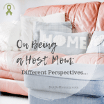 "Photo of a pink sofa with grey ottoman on ""On Being a Host Mom: Different Perspectives..."" on Not So Mommy..., a childless blog"