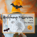 Photo of a dog wearing a Halloween hat and tie on Redefining Halloween as a Fur Mama on Not So Mommy..., a childless blog