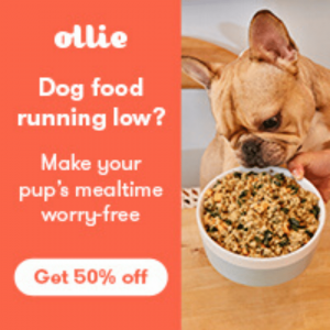 Photo with 50% off offer for Ollie Fresh Dog Food on Not So Mommy..., a dog mom blog