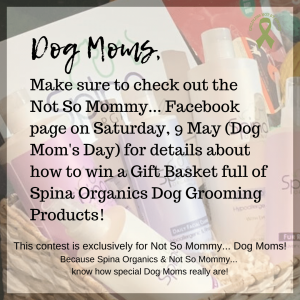 Photo of Spina Organics Gift Basket on Not So Mommy..., a childless not by choice & dog mom blog