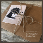 Photo of package received from Treebok Pets, on Not So Mommy..., an infertility, childless, & dog mom blog