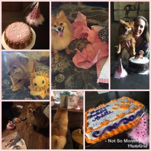 Photo Collage of Birthday Celebrations as Childless on Not So Mommy..., a childless blog
