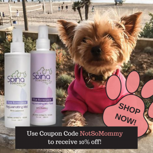 Photo of a puppy in a pink sweater on Spina Organics Ad on Not So Mommy..., a childless & dog mom blog