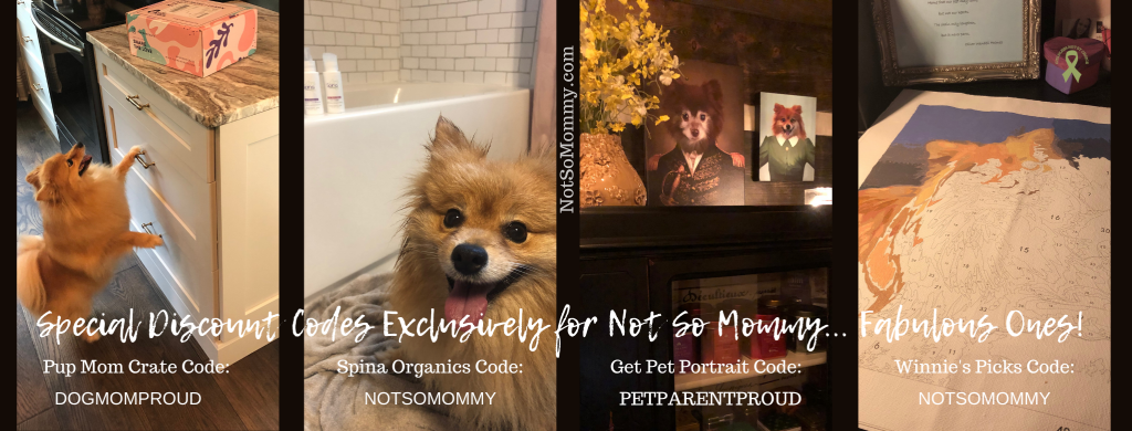 Photo with Special Discount Codes Exclusively for Not So Mommy... Fabulous Ones on Not So Mommy..., a childless blog