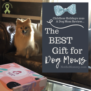 Photo of Maddie looking at a Pup Mom Crate on The Best Gift for Dog Moms on Not So Mommy..., a childless & dog mom blog