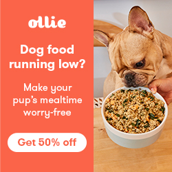Photo of Ollie Fresh Dog Food, availalbe through The Not So Mommy... Shop for Fur Babies & Fur Mamas