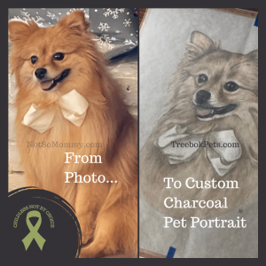 Photo of Maddie's photograph and custom charcoal pet portrait on Not So Mommy..., an infertility, childless & dog mom blog