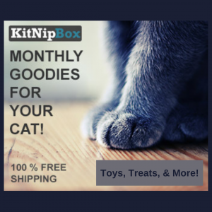Photo of KitNipBox Ad, a monthly subscription box for cats, available through The Not So Mommy... Shop for Fur Babies & Fur Mamas