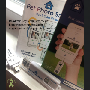 Photo of Pet Photo Saver on A Dog Mom Review on Not So Mommy..., a childless dog mom blog