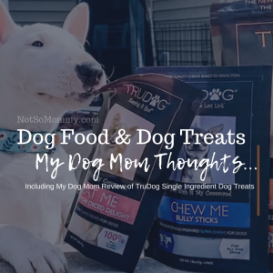 """Stock Photo from TruDog on """"Dog Food & Dog Treats: My Dog Mom Thoughts,"""" on Not So Mommy..., a childless dog mom blog"""